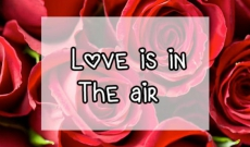 Valentine's Day: Love is in the air - Part 1